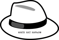 Cobra - Hack To Protect Your System